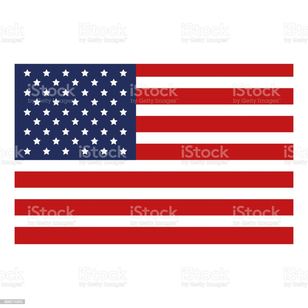 USA flag isolated icon vector art illustration