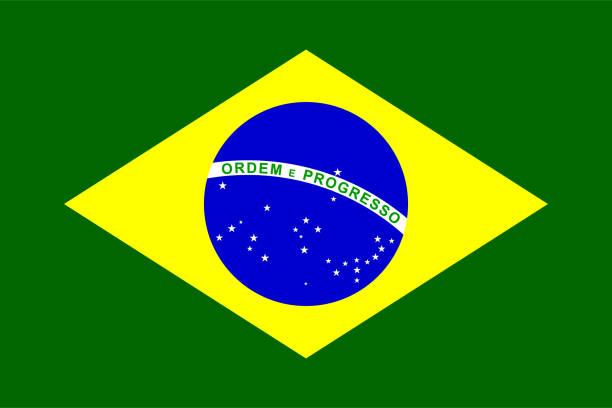 bildbanksillustrationer, clip art samt tecknat material och ikoner med brasilien flagga - brasilien flagga