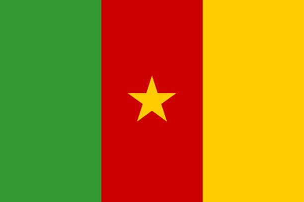 fahne von kamerun - kamerun stock-grafiken, -clipart, -cartoons und -symbole