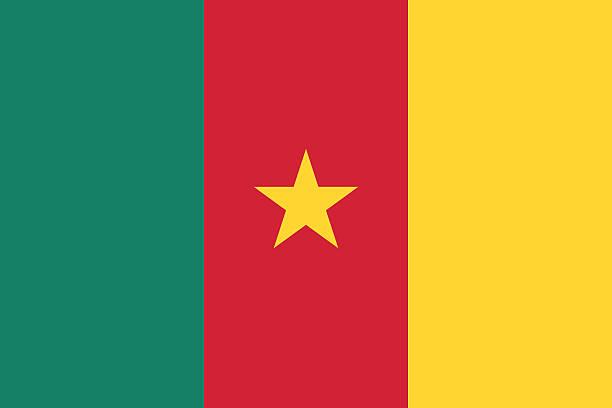 flagge von kamerun - kamerun stock-grafiken, -clipart, -cartoons und -symbole