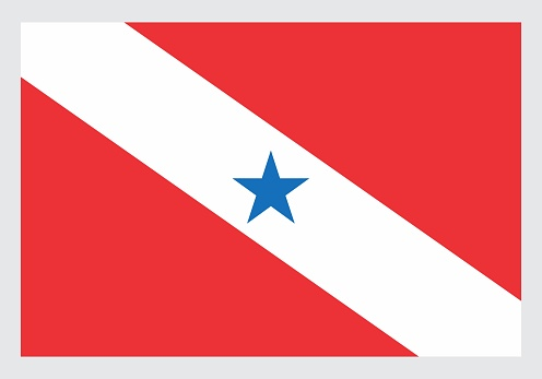 Flag of Para State