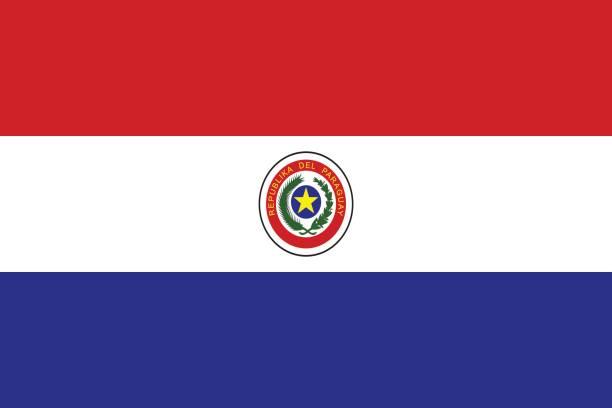 Bandera de Paraguay - ilustración de arte vectorial