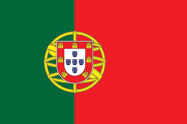 stockillustraties, clipart, cartoons en iconen met flag of portugal - portugal