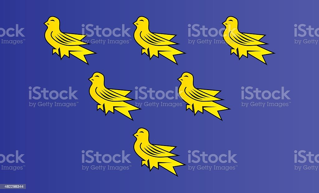 Flag of Sussex vector art illustration