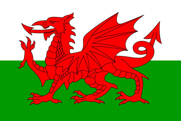 flag of wales - wales stock illustrations, clip art, cartoons, & icons