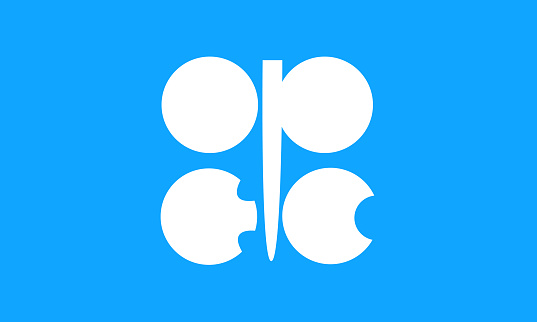 OPEC flag official colors and proportions, vector