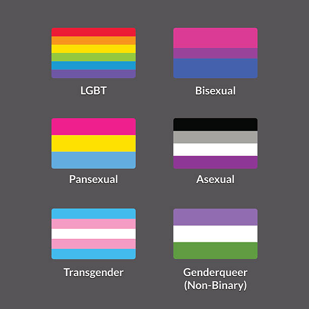 stockillustraties, clipart, cartoons en iconen met lgbt flags set - lgbt flag