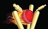 Flaming Cricket Ball Hitting Wicket Stumps