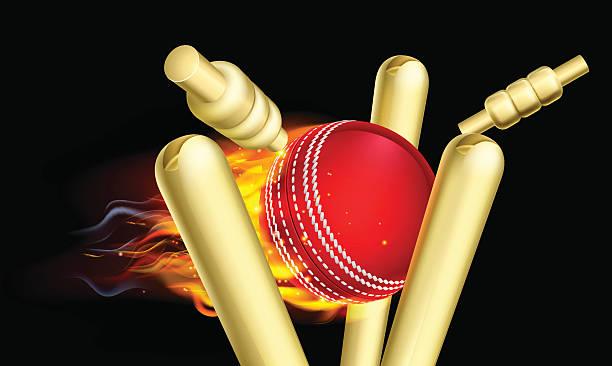 ilustraciones, imágenes clip art, dibujos animados e iconos de stock de llamas va tocones del wicket bola de críquet - críquet