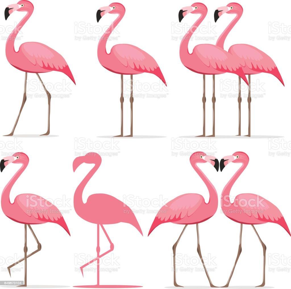 「フラミンゴ イラスト」の画像検索結果