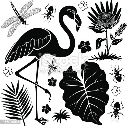 A vector design element set with a flamingo, taro leaf, assassin bugs, protea flower, dragonfly, and a palm leaf.
