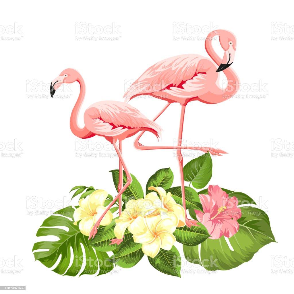 Flamingo Background Design Tropical Flowers Illustration