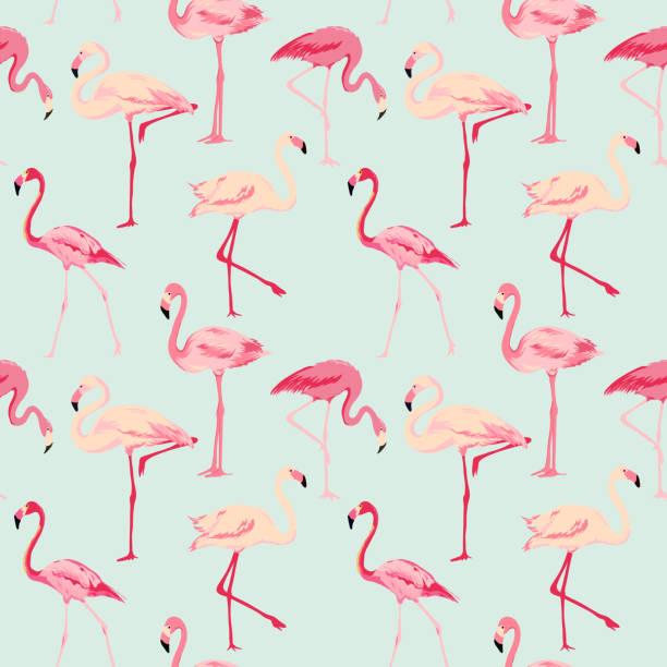flamingo bird background - retro seamless pattern - flamingo stock illustrations