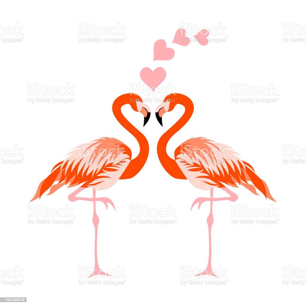 ilustração de fundo de ilustração vetorial pássaro flamingo e mais
