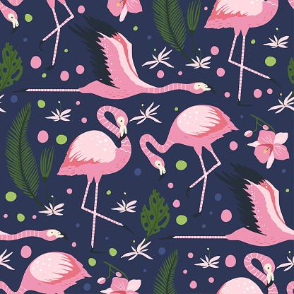 Flamingo bird vector seamless pattern.