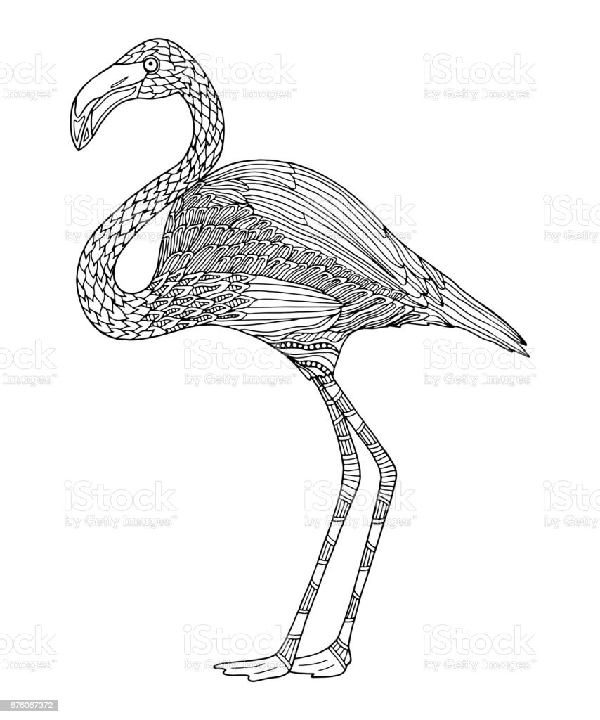 Flamingo Coloring Page Stock Vector Art More Images Of Adult