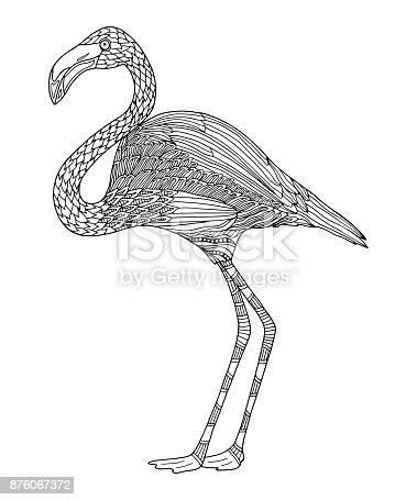 Flamingo Boyama Sayfası Stok Vektör Sanatı Beyaznin Daha Fazla