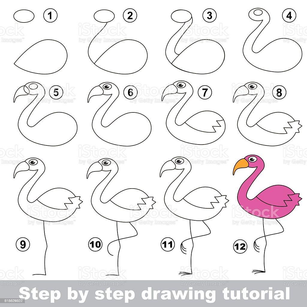 Flamingo Drawing Tutorial Stock Illustration Download