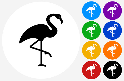 Flamingo Icon on Flat Color Circle Buttons