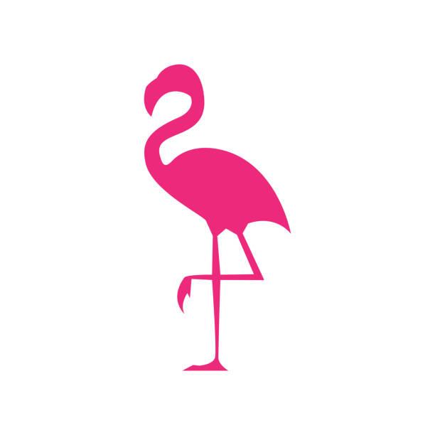 flamingo icon - vector illustration - flamingo stock illustrations