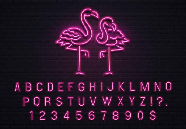 플라밍고 네온 간판입니다. 핑크 80 폰트입니다. 자주색 전구 편지 벡터 일러스트와 함께 열 대 플라밍고 전기 발광 바 게시판 - 형광 stock illustrations