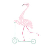 Flamingo on scooter cute print. Summer time. Tropical girl bird. Fashion child vector. Hand draw illustration for t-shirt, kids apparel and other design.