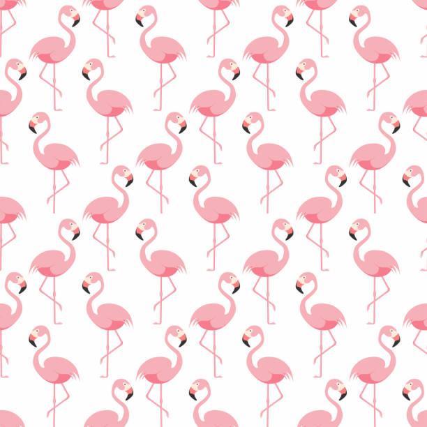 flamingo seamless pattern. pink flamingo standing on one leg. tropical pattern - flamingo stock illustrations