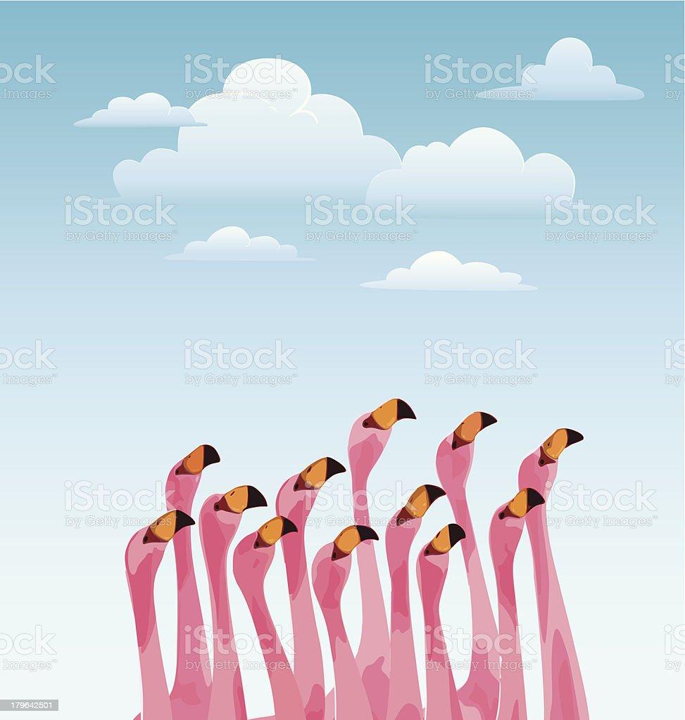 Flamingo royalty-free stock vector art