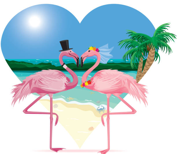 Flamingos in Love at the Beach vector art illustration