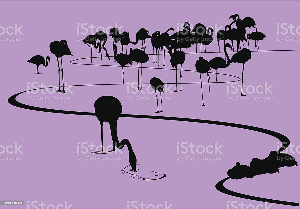 Flamingos on the shore Silhouette (vector & .jpg) royalty-free flamingos on the shore silhouette stock vector art & more images of animal