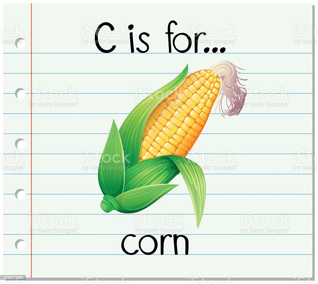 Flashcard Alphabet C Is For Corn Stock Vector Art