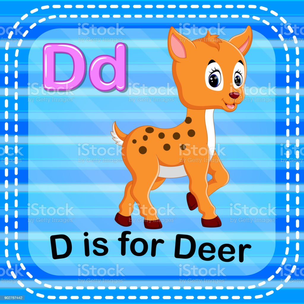 Flashcard letter D is for deer vector art illustration
