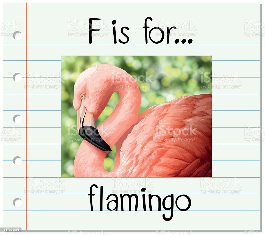 Ilustración de Tarjeta Educativa Con Letra F Por Flamingo y más ...