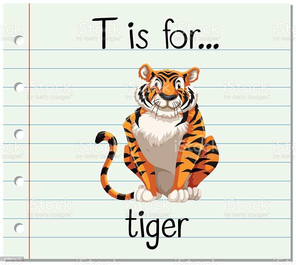 Flashcard Letter T Is For Tiger Royalty Free Stock