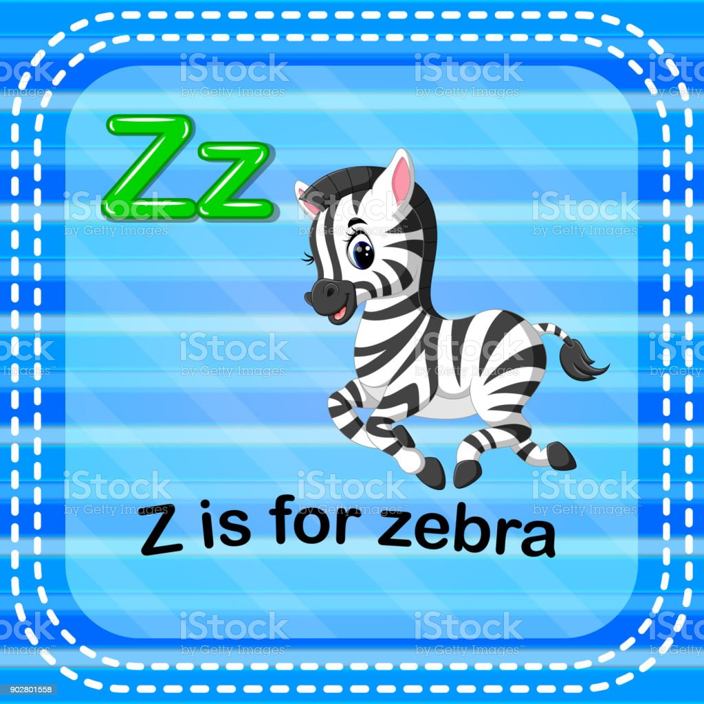 Flashcard letter Z is for zebra vector art illustration