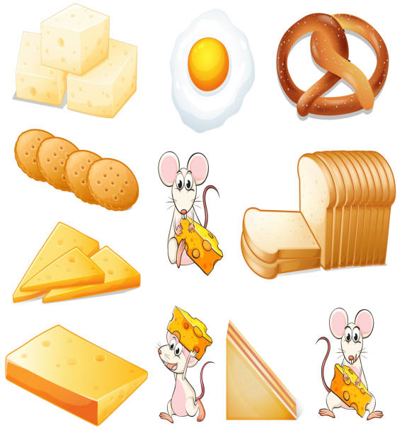 Royalty Free Cheese And Crackers Clip Art, Vector Images
