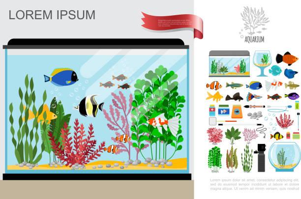 フラット美しい水族館の組成物 - 水族館点のイラスト素材/クリップアート素材/マンガ素材/アイコン素材
