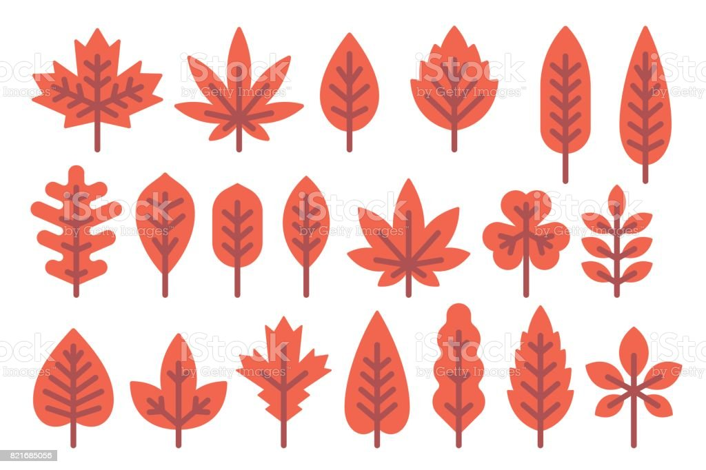Flat Design Autumn Leaf Shapes Set Stock Illustration - Download Image Now  - IStock