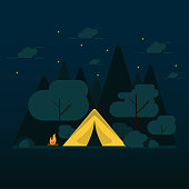 flat design camping in the forest at night with vector