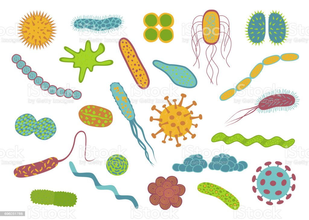 Flat design germs and bacteria icons set  isolated on white background. vector art illustration