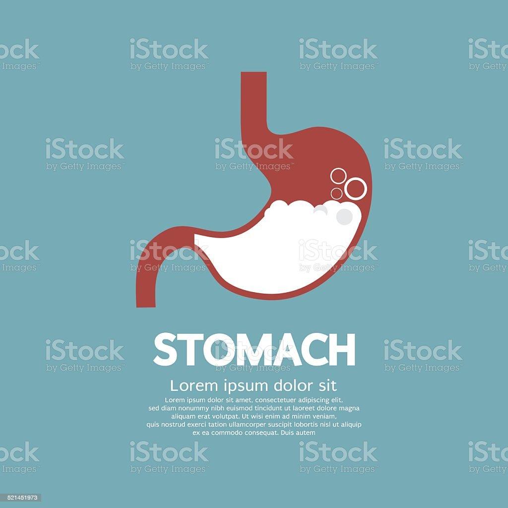 Flat Design Human's Stomach vector art illustration