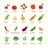 Vector illustrations of food for picnic and cooking