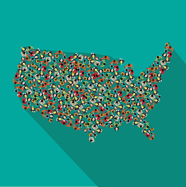 flat design map of the united states - demographics infographics stock illustrations, clip art, cartoons, & icons
