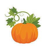 istock Flat Design Pumpkin 1169037354
