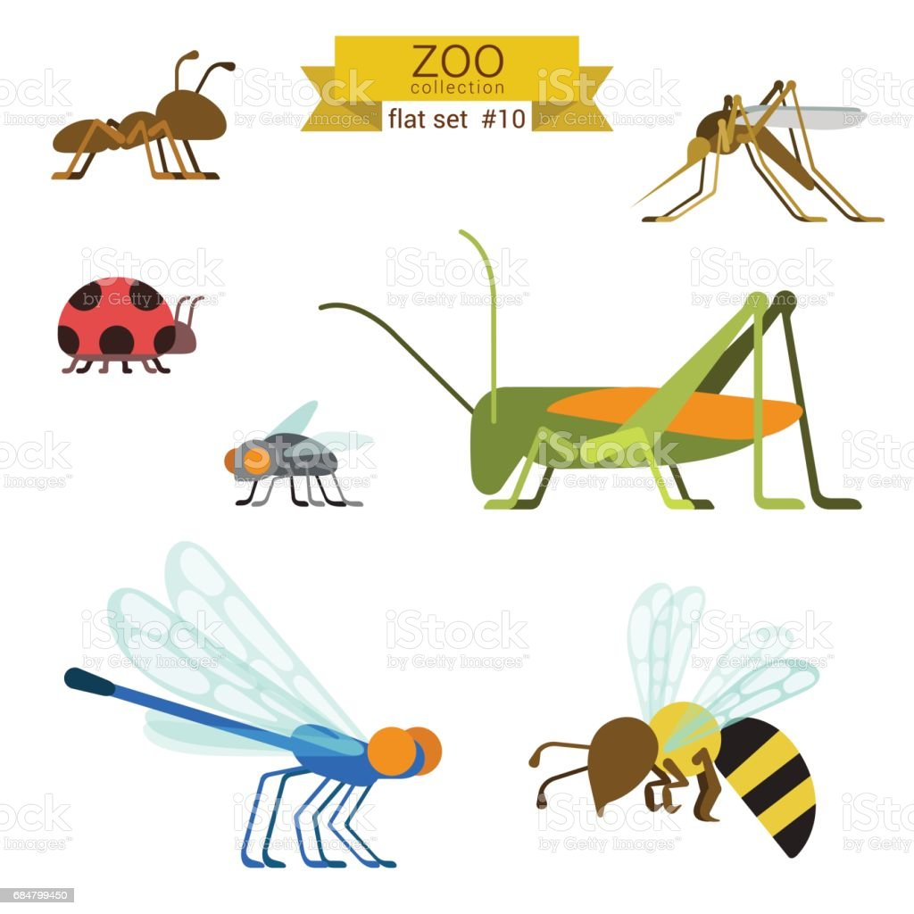 Flat design vector insects and ants icon set. Ant, mosquito, ladybug, fly, grasshopper, locust, dragonfly, wasp. Flat zoo children cartoon collection. vector art illustration