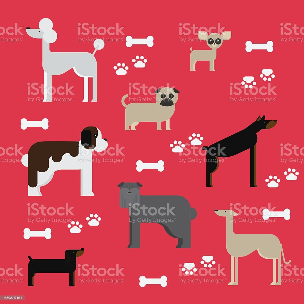 flat dog characters set, cartoon pet animal collection vector art illustration