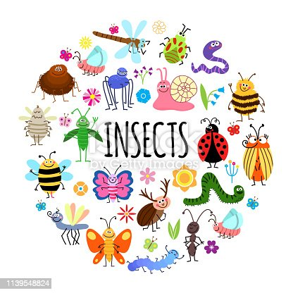 Flat funny insects round concept with spider worm grasshopper mosquito wasp beetles snail ant ladybug dragonfly caterpillar bee flowers isolated vector illustration