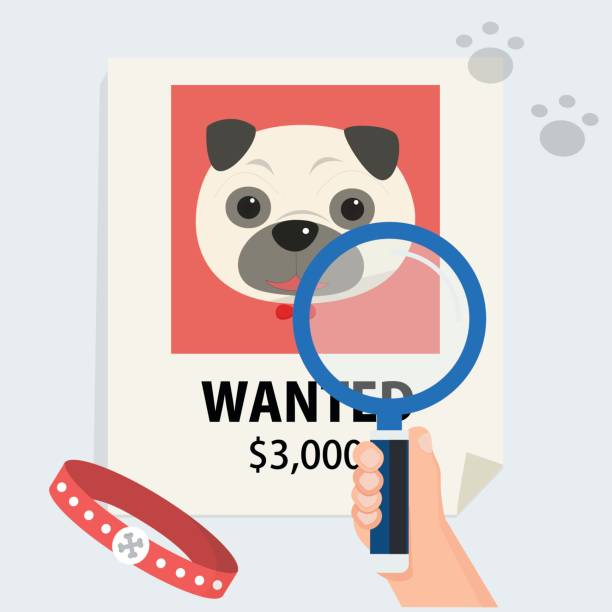 flat hand with magnification find cute dog from poster and footmark vector illustration.Missing dog and finding concept. flat hand with magnification find cute dog from poster and footmark vector illustration.Missing dog and finding concept. lost stock illustrations