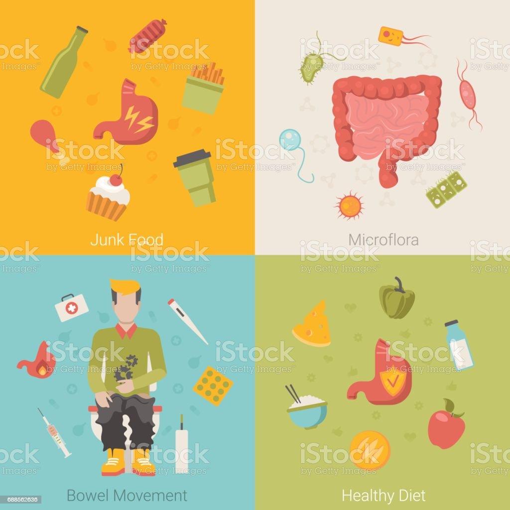 Flache Gesunder Magen Darm Darm Orgel Vektor Infografiken Konzept