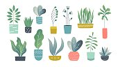 Flat houseplants. Indoor doodle garden plants, cute interior succulents and house plants. Hand drawn vector home garden set